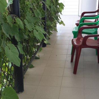 Гостевой дом Виноградная